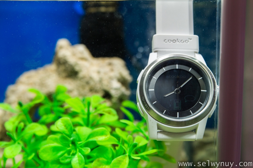 Cookoo Watch Under Water